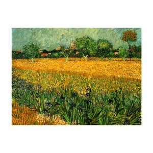 Reprodukcja obrazu Vincenta van Gogha - View of arles with irises in the foreground, 40x30 cm