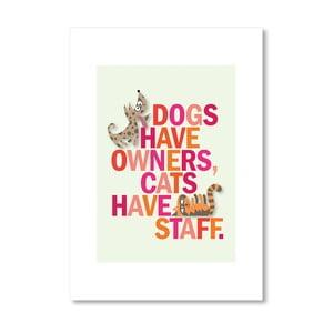 "Plakat autorski ""Dogs have owner"""