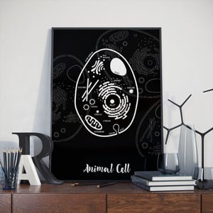 Plakat Follygraph Animal Cell, 30x40cm