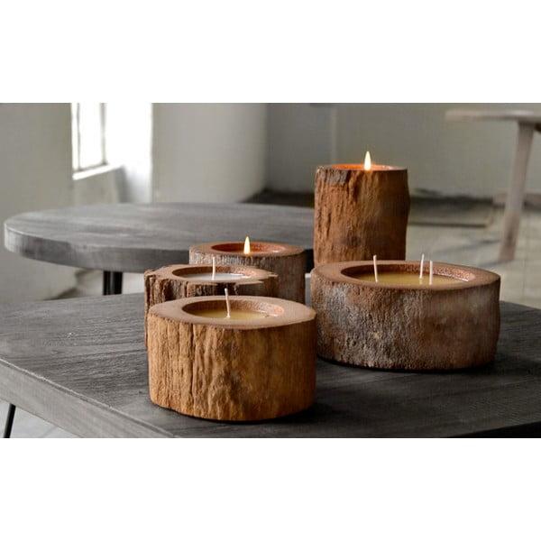 Palmowa świeczka Legno Cera o zapachu lilii wodnej, 40 godz
