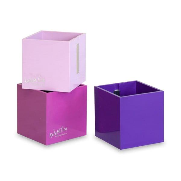 Zestaw 3 magnetycznych doniczek Cube Violet, średni