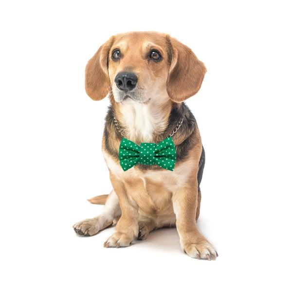 Mucha dla psa Funky Dog Bow Ties, roz. L, zielona w kropki