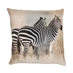 Poduszka Zebra, 50x50 cm