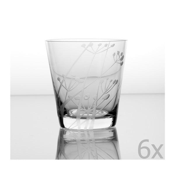Zestaw 6 szklanek Kmin 330 ml