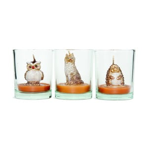 Zestaw 3 świeczników Owl