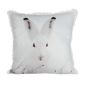 Poduszka Rabbit Velvet, 45x45 cm