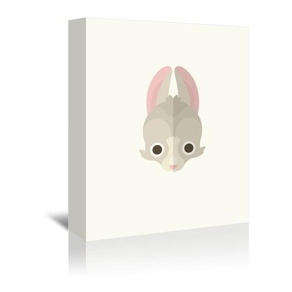 Obraz na płótnie Rabbit