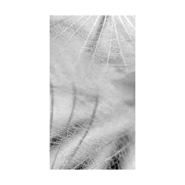 Tapeta Leonie, 48x300 cm