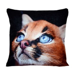 Poduszka Animals Cat, 42x42 cm