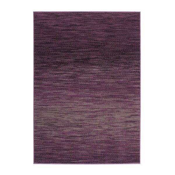 Dywan Funky 1933 Purple, 160x230 cm
