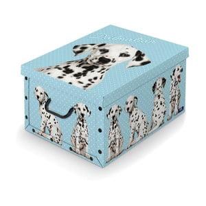 Pudełko Bonita Dalmatin