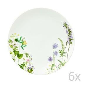 Komplet 6 talerzy Himalyan Flowers, 27 cm