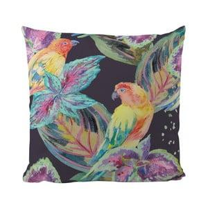 Poduszka Flying Colours, 50x50 cm