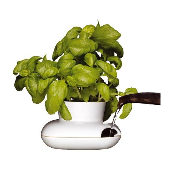 Doniczka na zioła Sagaform Herbs, duża