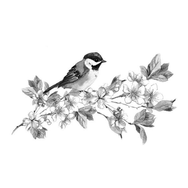 Obraz Black&White Birdie, 45x70 cm