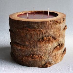Palmowa świeczka Legno o zapachu owoców egzotycznych, 120 godz.