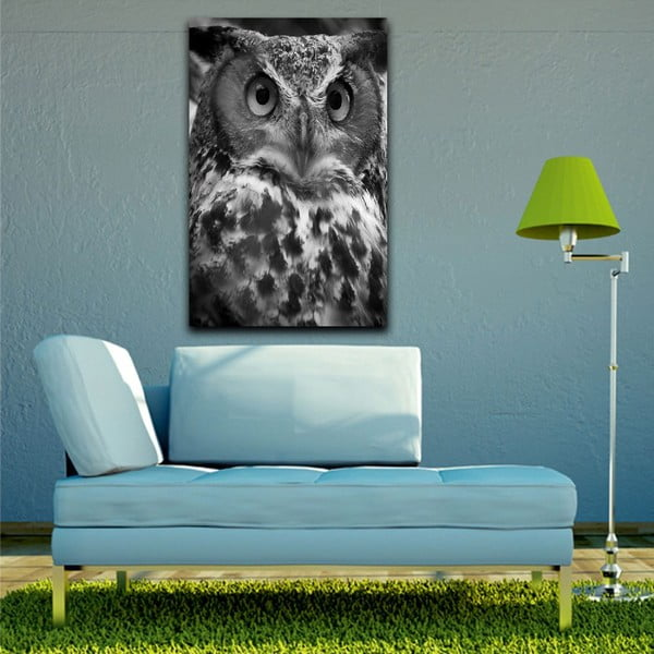 Obraz Black&White Owl, 45x70 cm