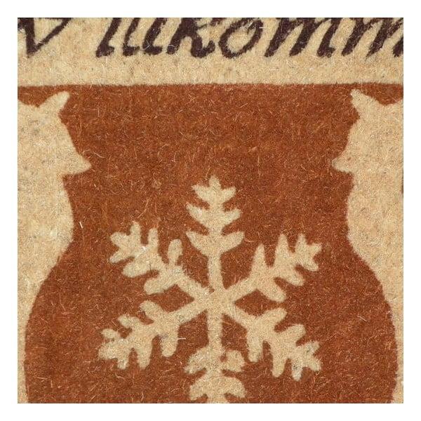 Wycieraczka Wilkommen, 73x45 cm