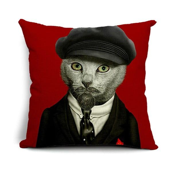 Poszewka na poduszkę Mr. Cat, 45x45 cm