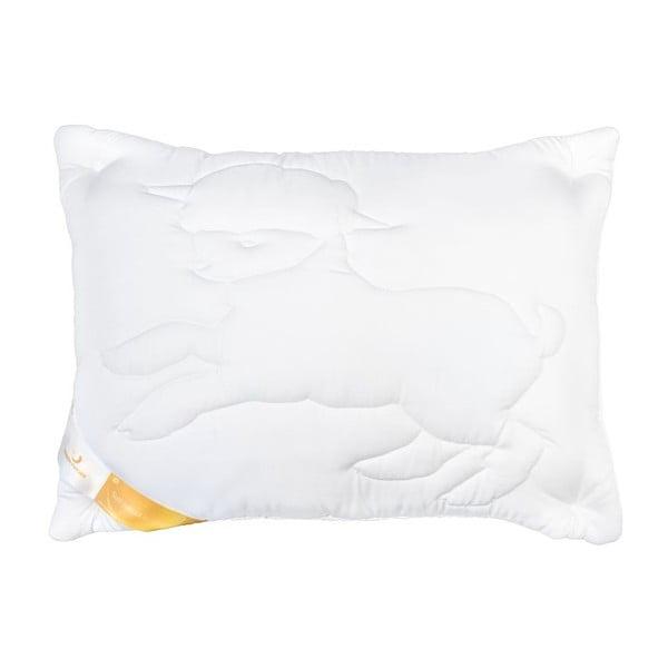 Poduszka Perna Lana z wełną Merino, 70x70 cm