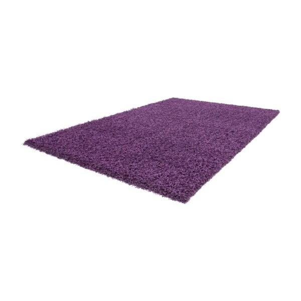 Dywan Oslo Violet, 140x200 cm