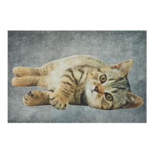 Dywanik Grey Tabby 75x50 cm