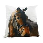 Poduszka Mars&More Horse, 50x50 cm