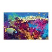 Fotoobraz Sealife, 51x81 cm