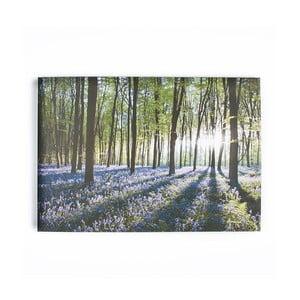 Obraz Graham & Brown Bluebell Landscape,100x70cm