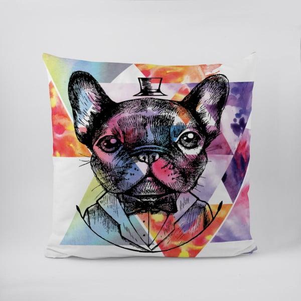 Poduszka Handsome Pug