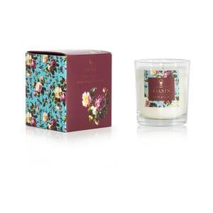 Świeczka o zapachu gruszki i lilii Bahoma London Oasis Renaissance, 55h