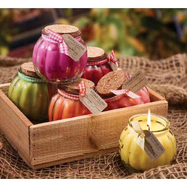 Świeczka Fruit Pots, cytrusy