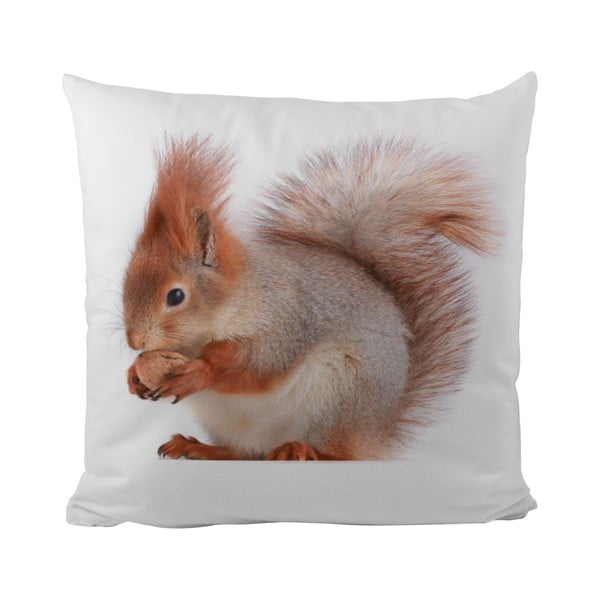 Poduszka   This Squirrel, 50x50 cm