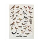 Ścierka Gift Republic Garden Birds