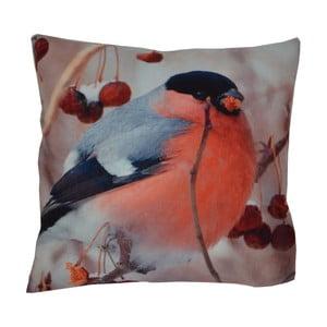 Poduszka Animals Bird, 42x42 cm