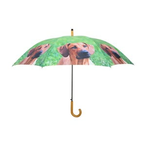 Zielony parasol w pieski Esschert Design