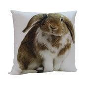 Poduszka Rabbit Frank, 45x45 cm