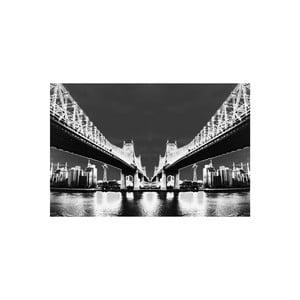 Obraz Night Vision White, 41 x 61 cm