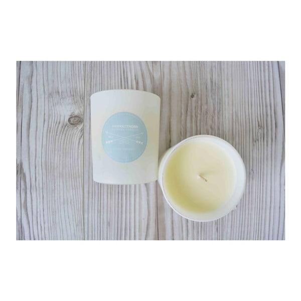 Zestaw 3 świeczek Summer Candles