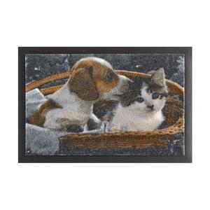 Wycieraczka Zala Living Animals Dog and Cat, 40x60 cm