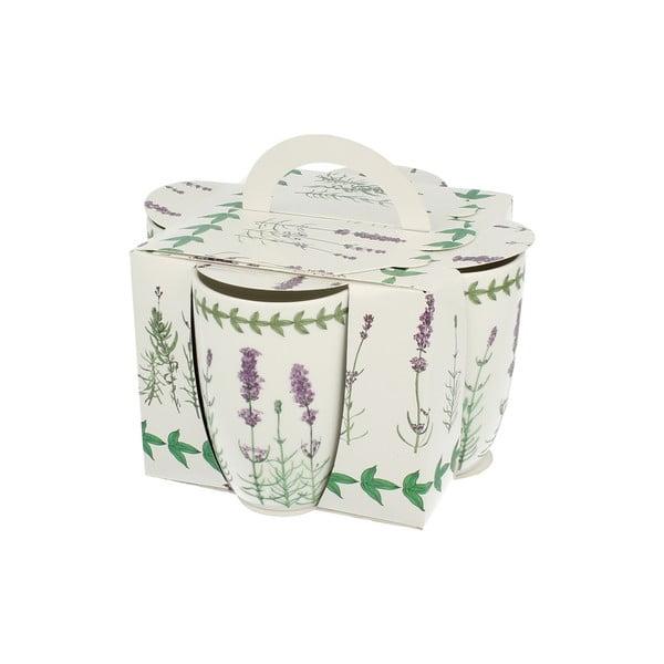 Zestaw 4 porcelanowych kubków Lavender