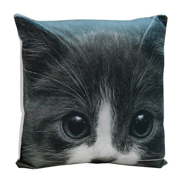 Poduszka Black Kitty, 45x45 cm