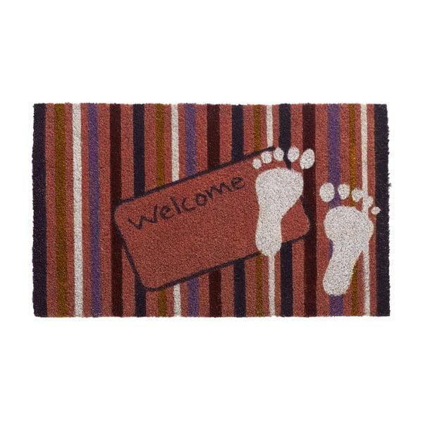Wycieraczka Happy feet, 45x75 cm