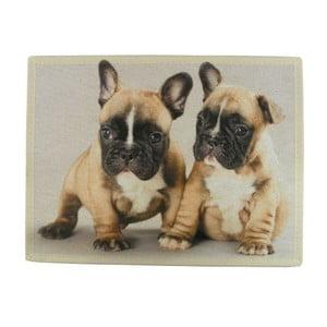 Dywanik French Bulldog Puppies 75x50 cm