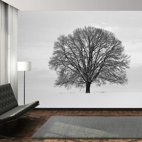 Tapeta wielkoformatowa Tree, 315x232 cm