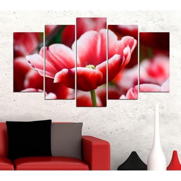 5-częściowy obraz Tulipan