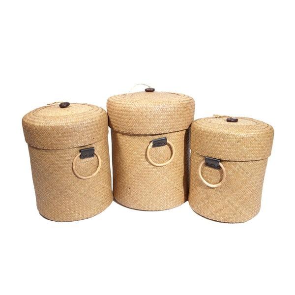 Zestaw 3 koszyków Paniers, 50x39 cm