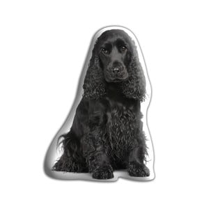 Poduszeczka Adorable Cushions Cocker spaniel