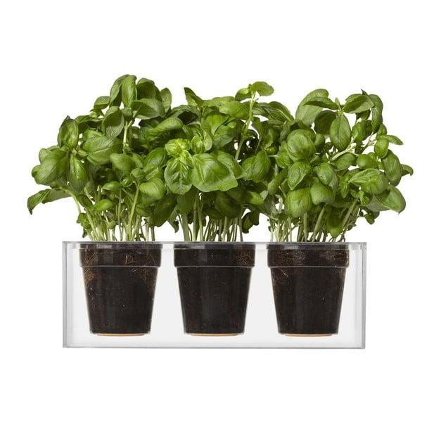 Zestaw 3 małych doniczek nawadniających rośliny Cube