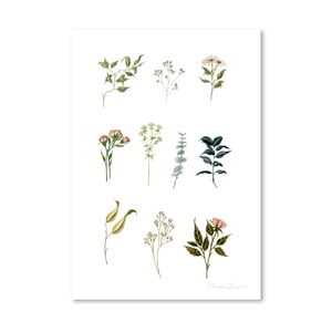 Plakat Americanflat Delicate Botanica Lpieces by Shealeen Louise, 30x42 cm